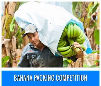 Banana Packing Competition